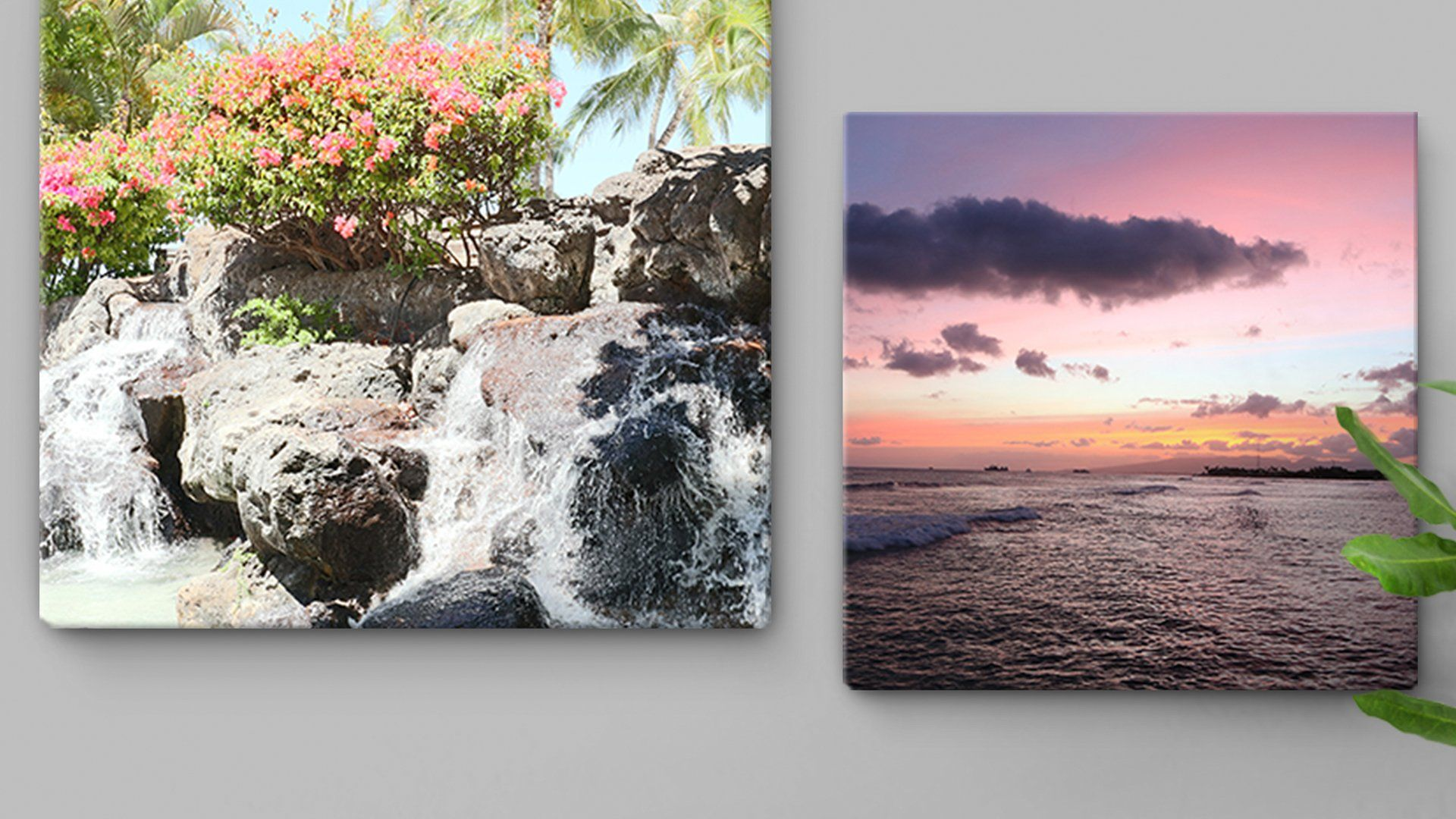 Two canvas prints that would look great in anyone home.